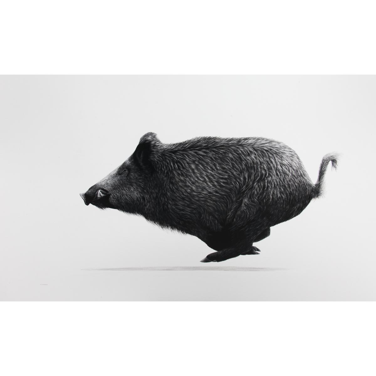Keith Sykes – Running Boar Card