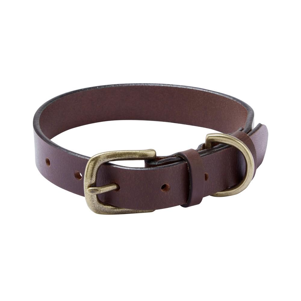 Dog-Collar