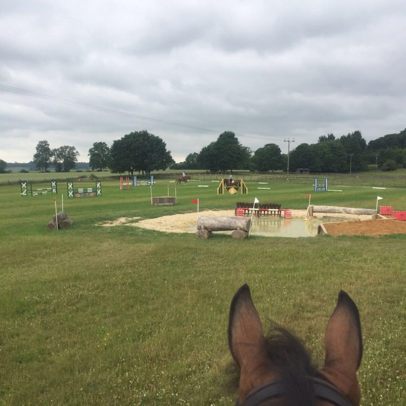 Grass Arenas & Schooling Field