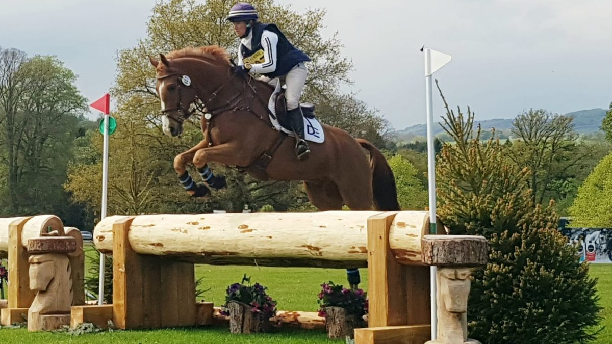 The First of Several Busy Weekends; Aston (2) & Chatsworth International