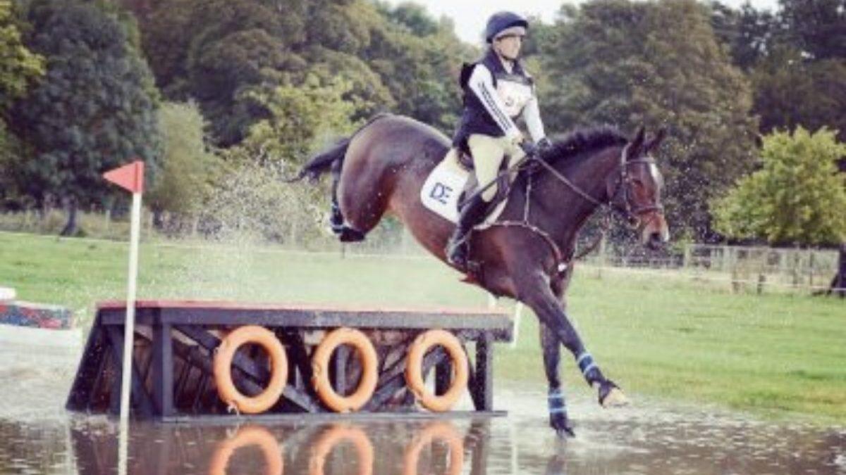 Osberton National Young Horse Championships!