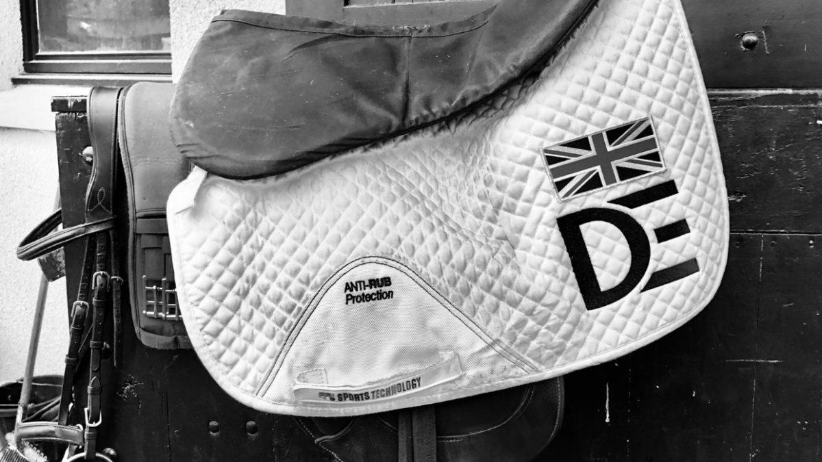 MBF Dassett Legacy – 7yr Old World Championships