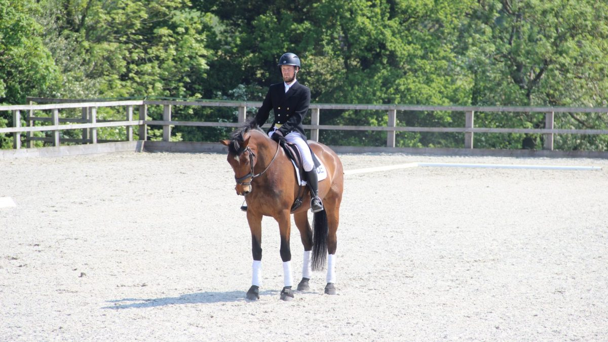 Dassett Does Dressage Series: Round 1 & 2
