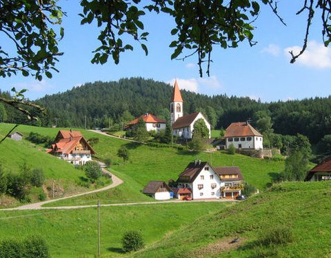 Rhine, Romantic Road and Black Forest Tour