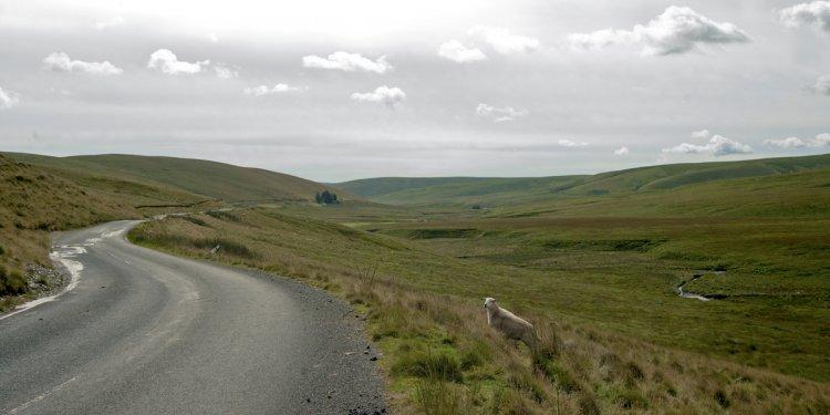 The Elan Valley