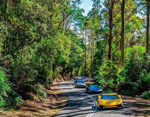 Tasmanian Supercar Tour