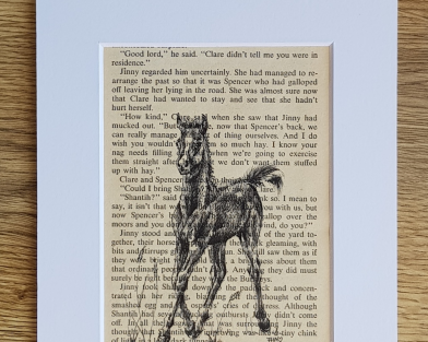 Foal Pen & Ink Drawing On Vintage Pony Book Page