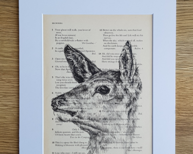 Deer Pen & Ink Drawing on Vintage Quote Page
