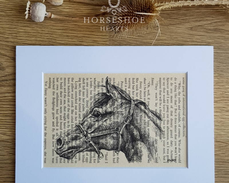 Horse Head Pen & Ink Drawing on Vintage Page