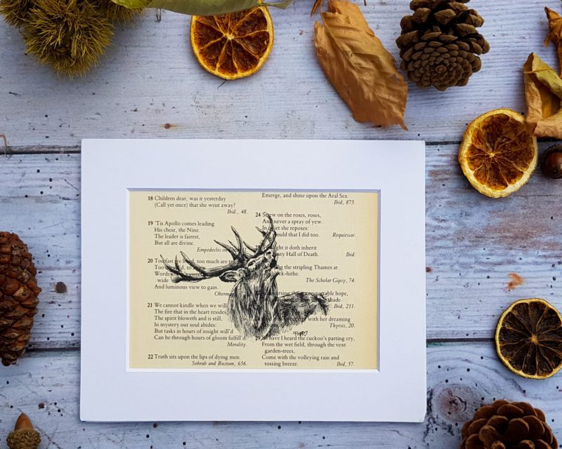 Stag Pen & Ink Drawing on Vintage Quote Page