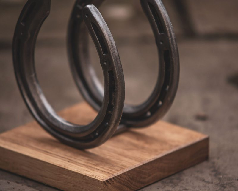 Horseshoe & Oak Bookends