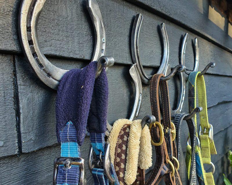 Horseshoe Hook Rack