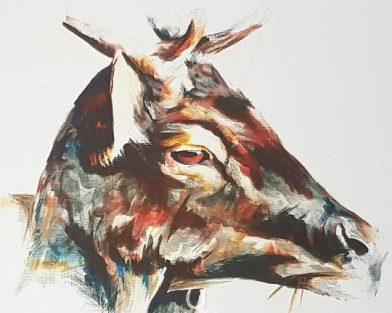 Sunlit Stag Art Print