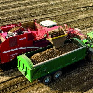 BAILEY ROOT TRAILERS