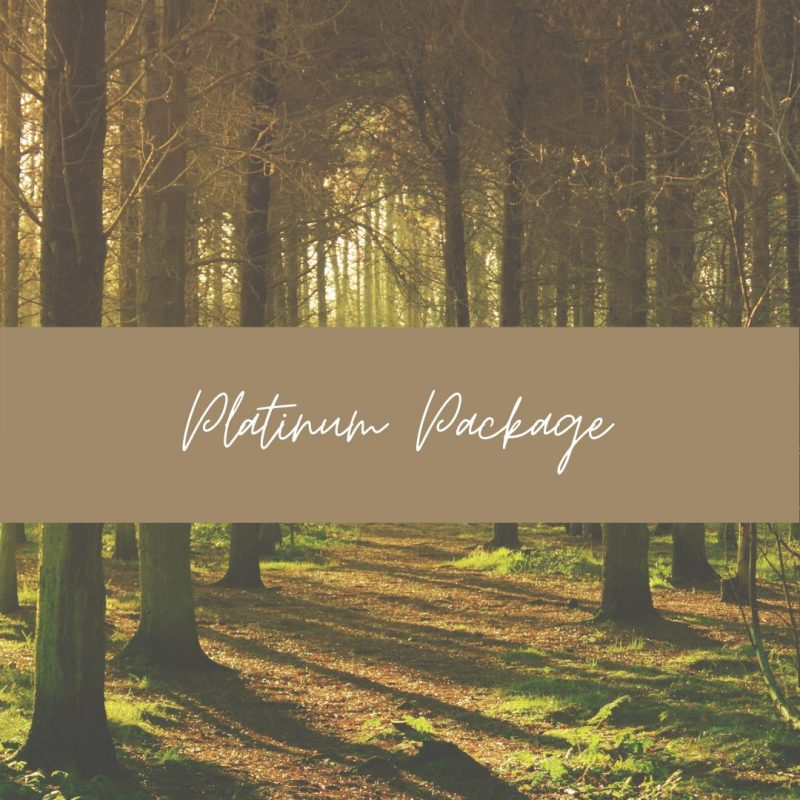 Platinum Directory Package – 3 Months