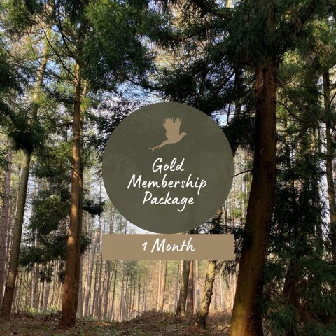 gold membership package 1 month