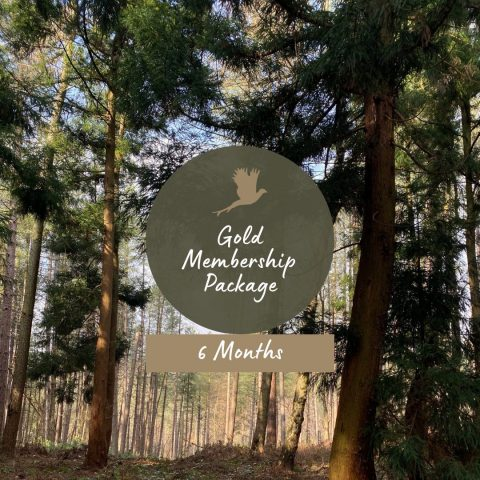 gold membership package 6 months