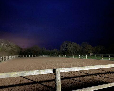 BG Sports Horses