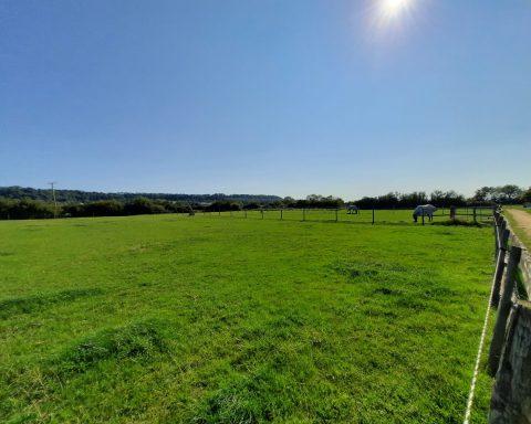 Westcote Ley Livery