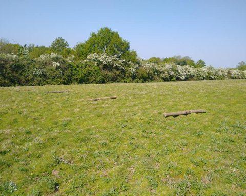 Sunnyside Equestrian Surrey