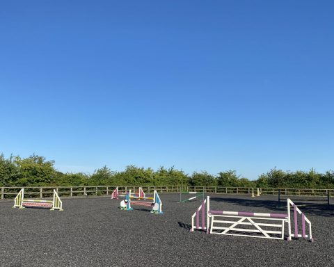 Joanne Cannon Equestrian