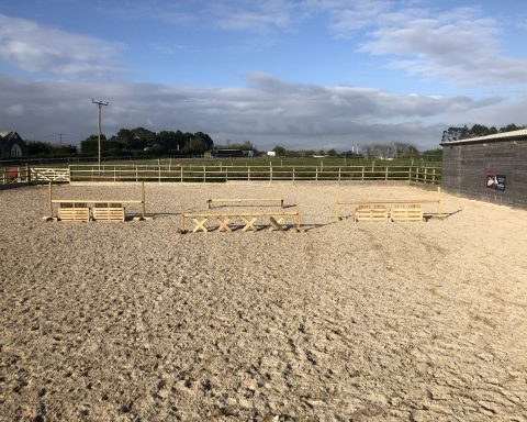 LSN Equestrian and Rosewater Sports Ponies