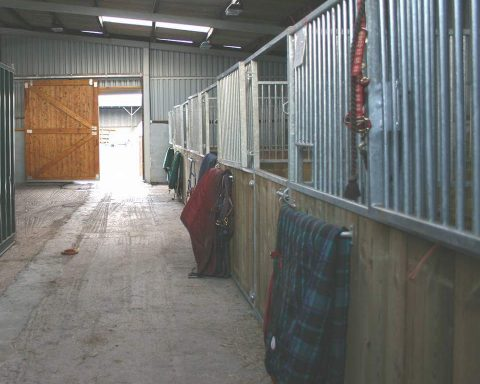 Gorsebank Equestrian