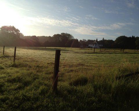 Bramsells Farm