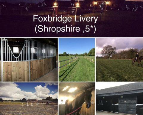 Foxbridge Livery