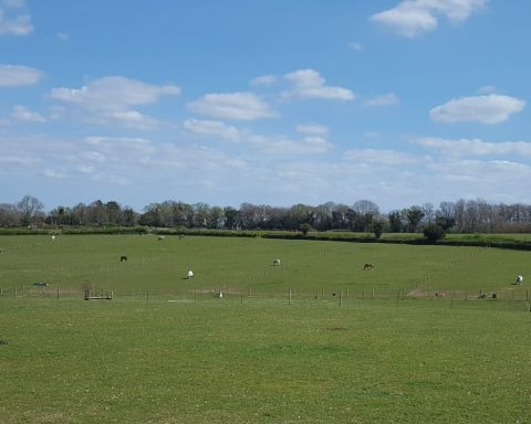 Great Bookham Equestrian Centre