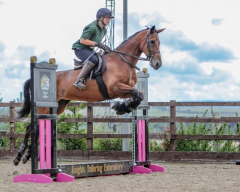 Ex-Racehorse rehoming and reschooling with ROR Reg Trainer