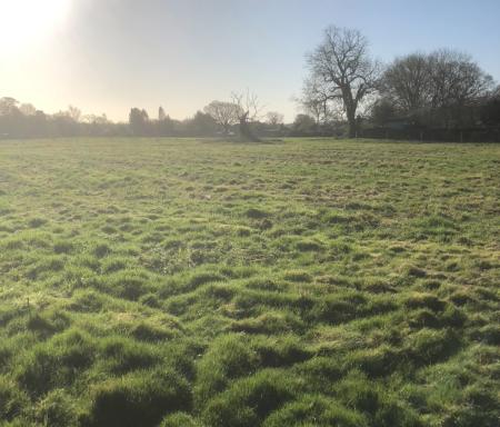 Woodmancote private grazing