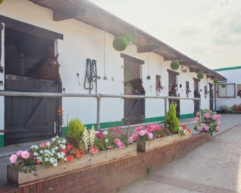 Calico Livery Stables