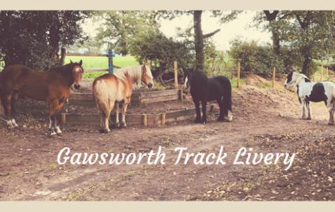 Gawsworth Track Livery