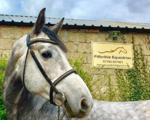 Pitforthie Equestrian