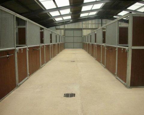 NMH Sporthorses – Livery and Rehabilitation