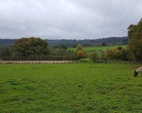 Bridgelands Farm Stables
