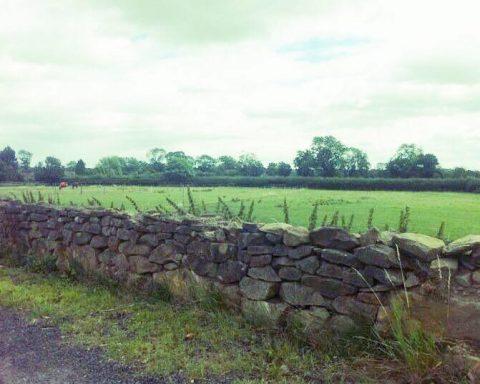 The Brambles – Rural North Warwickshire Livery Yard