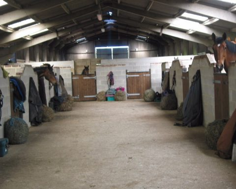 Netherton Hall Livery Stables