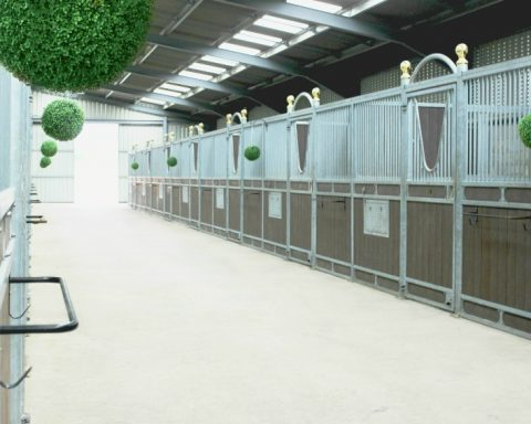 Drakeley Stables – Luxury Livery & Training