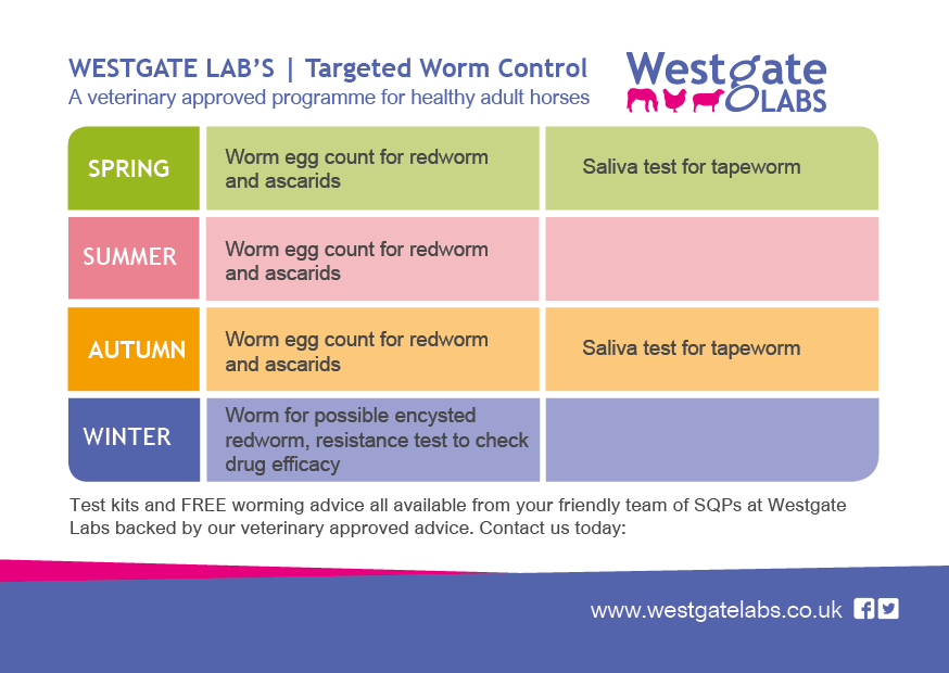 targeted-worming-programme-a6-june16