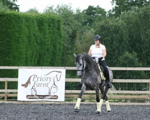 Priory Farm Equestrian