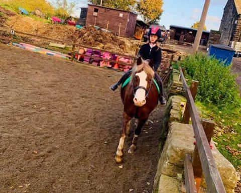 Birkhill Farm Equestrian Centre