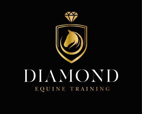 Diamond Equine Training