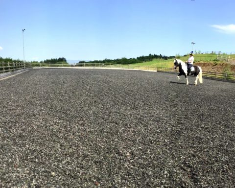 Cleish Equestrian