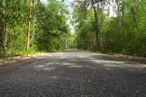Mexico – The Long and Winding Road…to Success