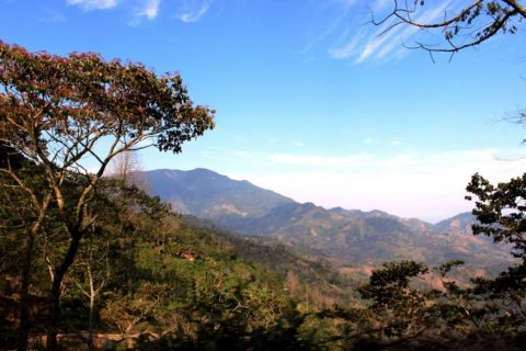 Honduras – March Expeditions