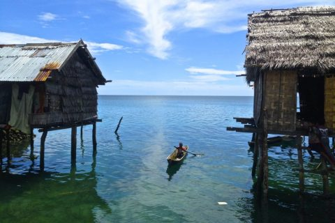 Indonesia – Any fin is possible in the Wakatobi region
