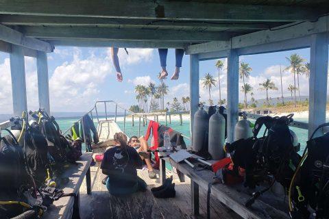 Bau Bau Marine Site, Indonesia – A day in the life