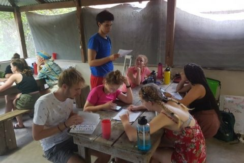 Calakmul goes digital! A field-report on our new data entry system in our forest site, Mexico